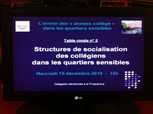 photo 300x224 Table ronde n°2: Structures de socialisation