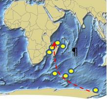 taf2 Un Gradient du subantarctique aux îles éparses ?