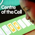 Center of the cell