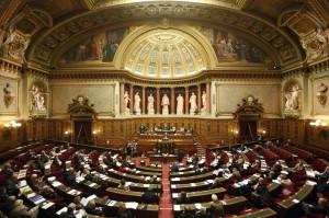 hemicycle senat 300x199 Débat en séance publique au Sénat le 23 janvier 2013